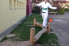 training_24902043243_o