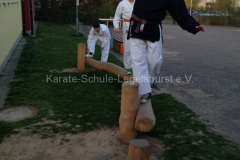 training_25410245952_o